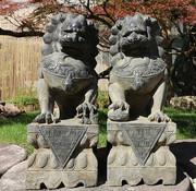Yajutang Fu dogs Guardian lions Temple lion 60cm H