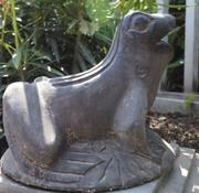 Yajutang Frosch naturstein Brunnen für Garten