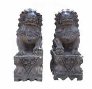 Yajutang Fu Hunde Wächterlöwen Tempellöwen 40cm H