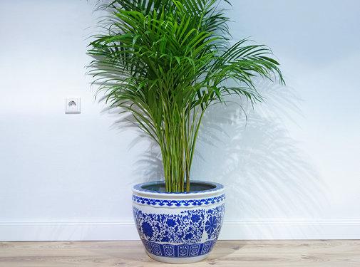 Yajutang Planter flowerpot plant pot