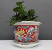 Yajutang Flowerpot red & colorful flowers Ø 17