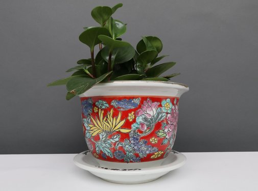 Yajutang Flowerpot red & colorful flowers Ø 17
