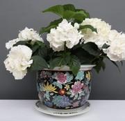 Yajutang Blumentopf Schwarz mit bunten Blumen Ø24