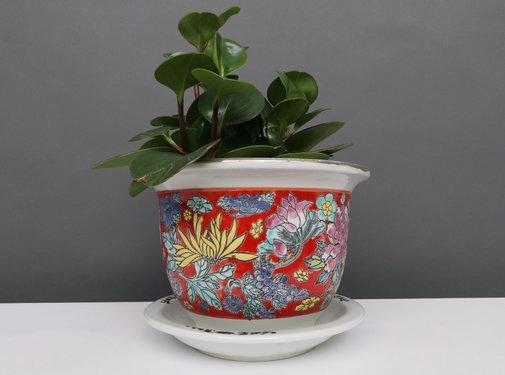 Yajutang Flowerpot red & colorful flowers Ø33