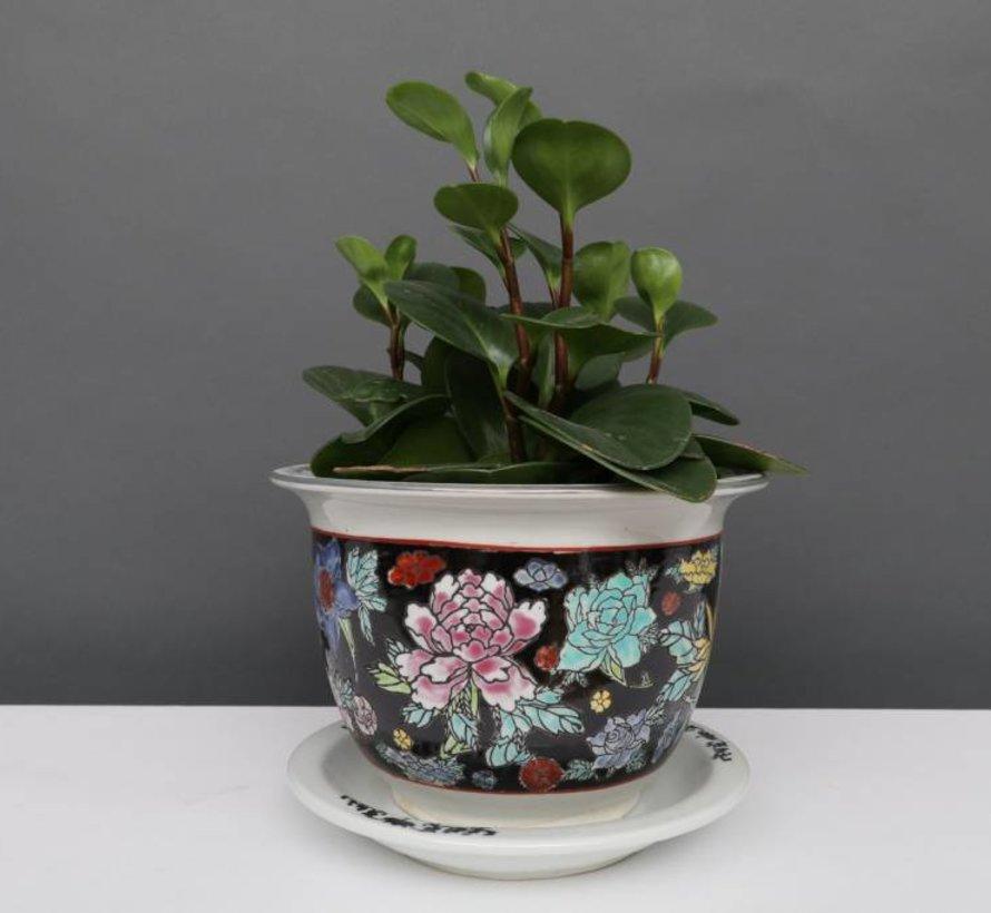 China Porzellan Blumentopf Schwarz mit bunten Blumen Ø 20cm