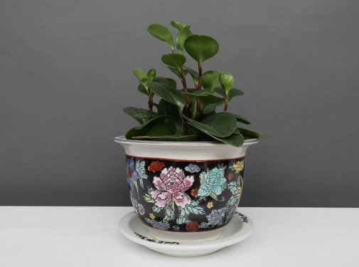 Yajutang Flowerpot black & colorful flowers Ø17