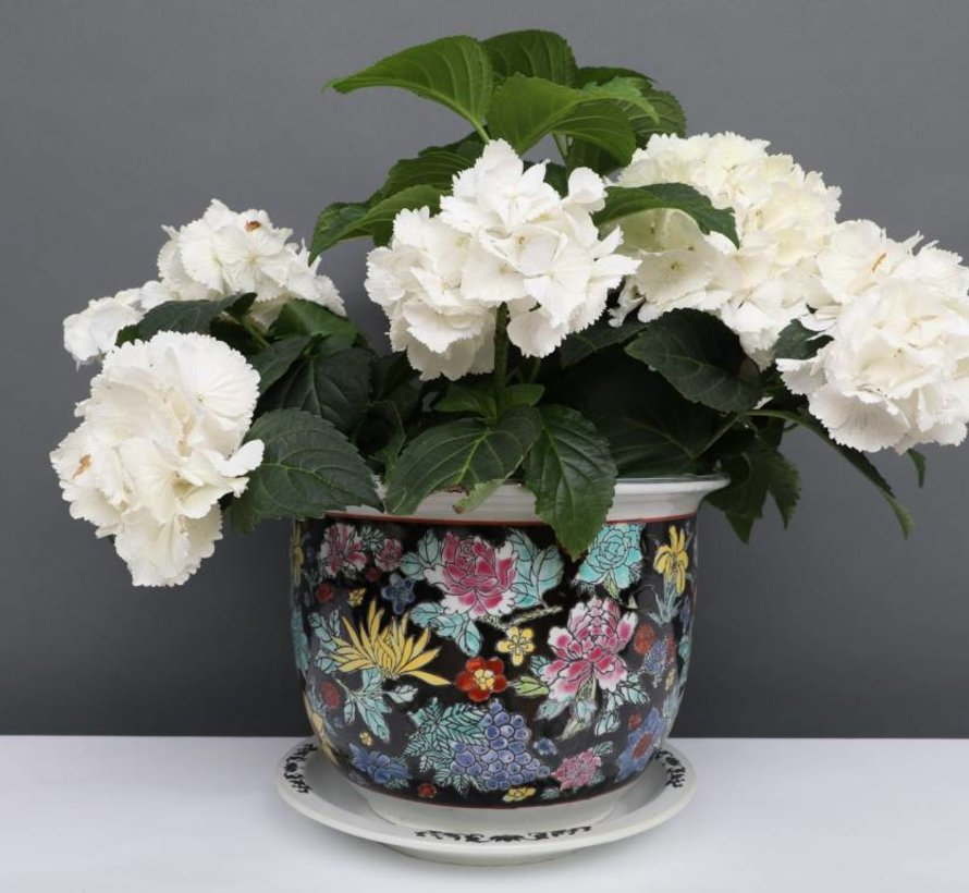 China Porzellan Blumentopf Schwarz mit bunten Blumen Ø 17cm