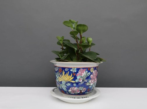 Yajutang Blumentopf Blau mit bunten Blumen Ø 17cm