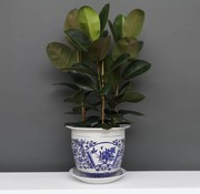 Yajutang Blumentopf Blau-Weiß mit Pfingstrose Ø40