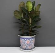 Yajutang Flowerpot Blue-White & red Flowers Ø40cm