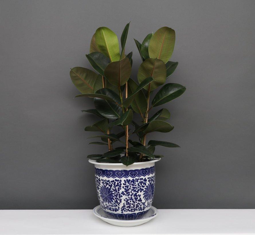 China Porzellan Blumentopf Blau-Weiß Lotusblumen Ø40cm
