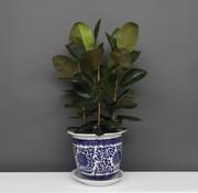 Yajutang Flowerpot Blue-White lotus flowers Ø33
