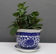Yajutang Blumentopf Blau-Weiß Lotusblumen Ø20