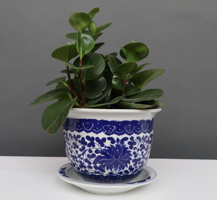 China Porzellan Blumentopf Blau-Weiß lotusblumen Ø 17cm