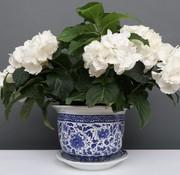 Yajutang Blumentopf Blau-Weiß Nelken blumen Ø24
