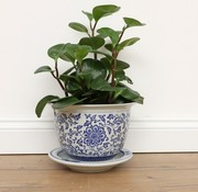 Yajutang Flowerpot Blue-White sunflowers Ø20