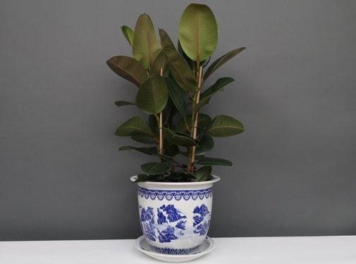 Yajutang Blumentopf Blau-Weiß mit Landschaft Ø28