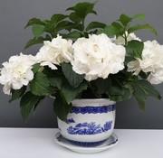 Yajutang Blumentopf Blau-Weiß mit Landschaft Ø24