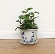 Yajutang Pot plum orchid bamboo chrysanthemum
