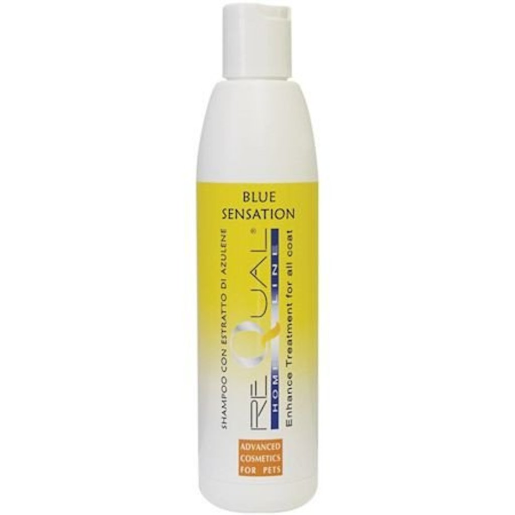 ReQual  Requal Blue Sensation shampoo 250 ml