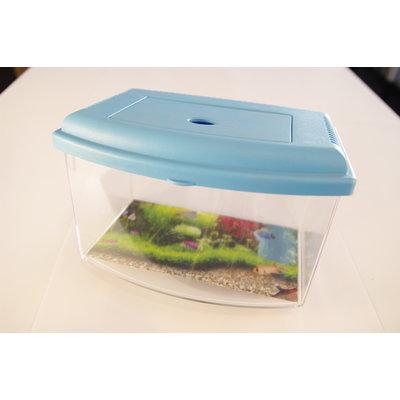 Aquarium Schildpad - Blauw L