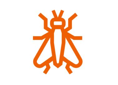 Vliegen - insecten