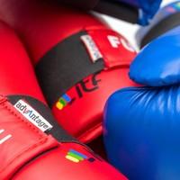 ITF Approved TaekwonDo handbeschermers