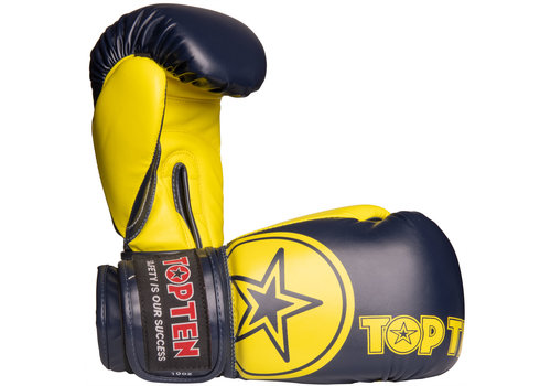 Top Ten Boxing Gloves SUB
