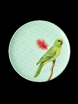 Rice Melamine lunch bord Vintage Bird - green