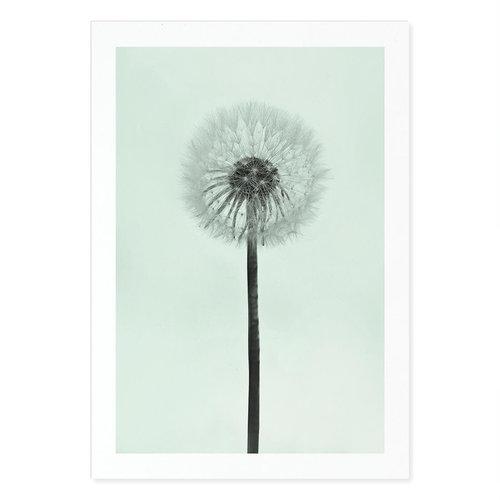 Incado Kunst Kaart 15x21 Carma Nature Dandelion