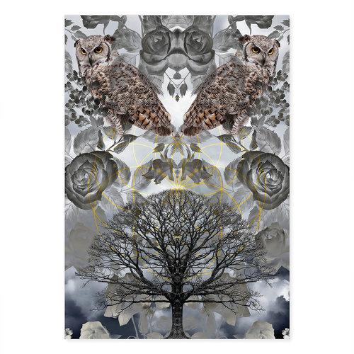Incado Kunst Kaart 15x21 GeoManiac Owls