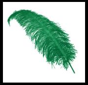 Joni's Winkel Pieten veer groen 25 cm