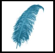 Joni's Winkel Pieten veer turquoise 25 cm