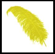 Joni's Winkel Pieten veer geel 25 cm
