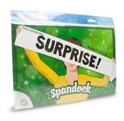 """Miko Spandoek  """"Surprise!"""" 150x25 cm"""