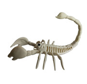Joni's Halloween Shop Schorpioen skelet van plastic 32 cm