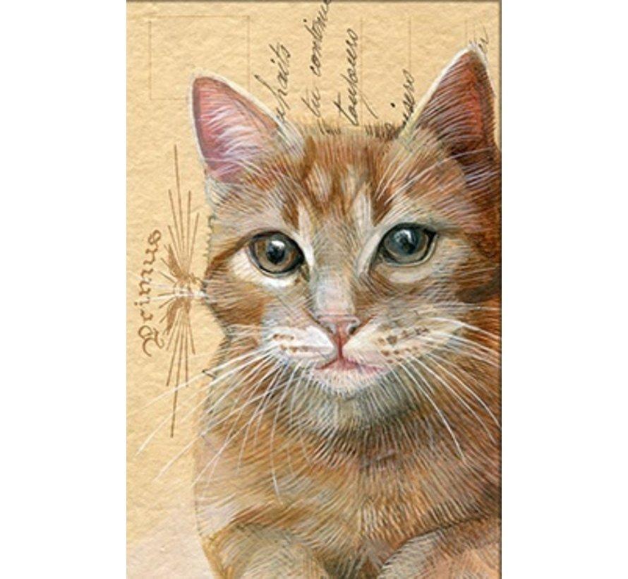 """Luxe Kaart met envelop """"Kat rood"""" 11,5x17,5cm"""