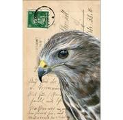 """Meander Luxe Kaart met envelop """"Arend"""" 11,5x17,5cm"""