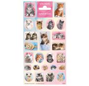 "Stickervel Dieren Softies & Cuties ""Kittens"""