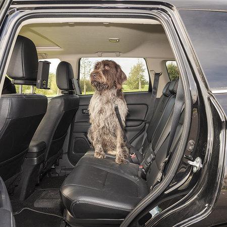ProPlus Hondenriem voor Autogordel