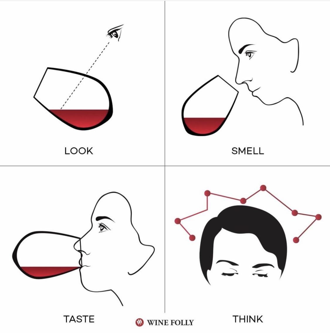 WineFolly_Tasting