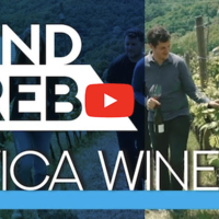 Get to know Plešivica & it's winemakers