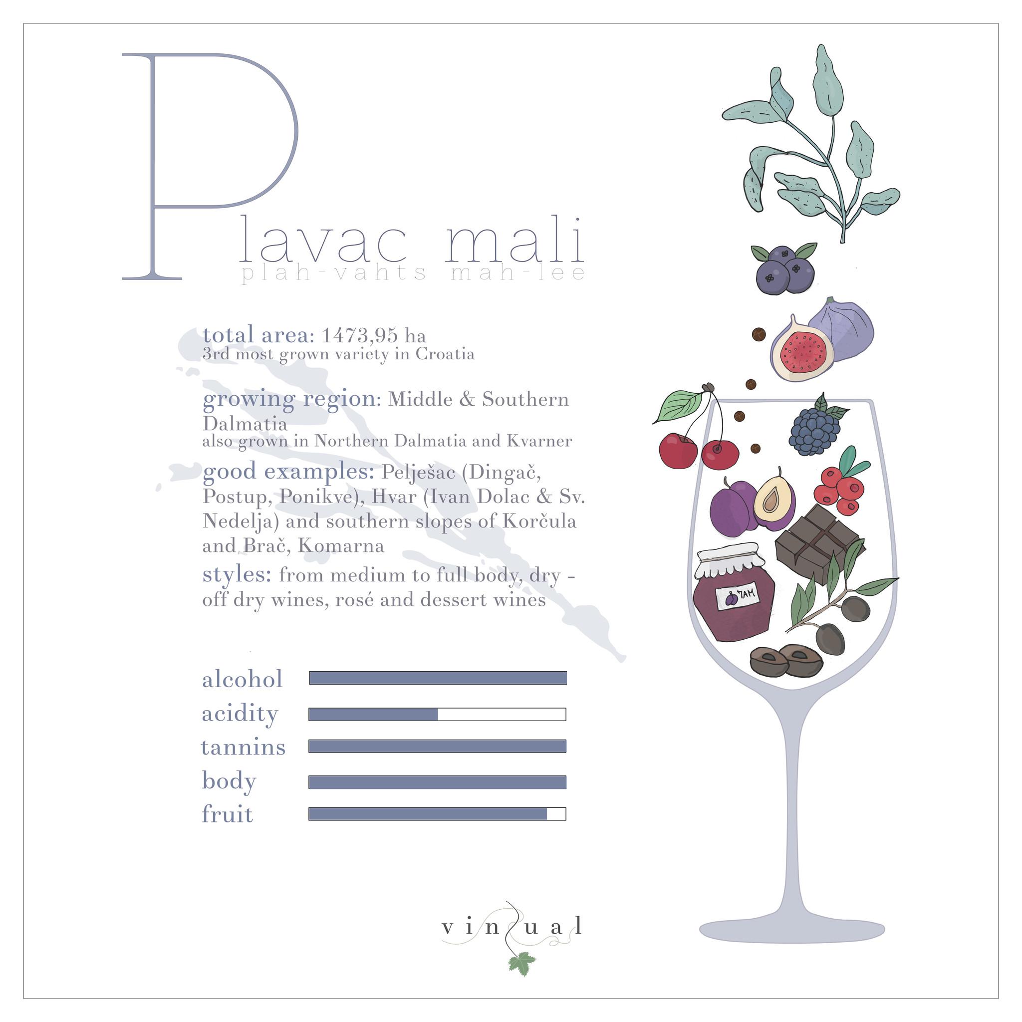 Plavac mali profile by Vinzual