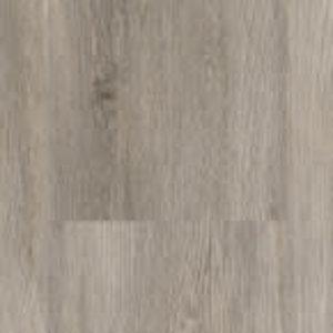 PVC DD Avontuurlijk Levendige Plank Maanzaad