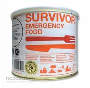 MSI Emergency Food Survivor Curry Chicken met Rijst (blik 1000 gram)