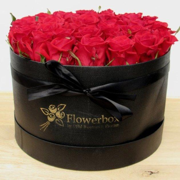 Flowerbox Rood L