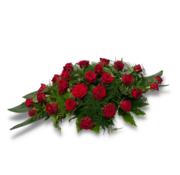 Langwerpig rode rozen  +/- 100 cm