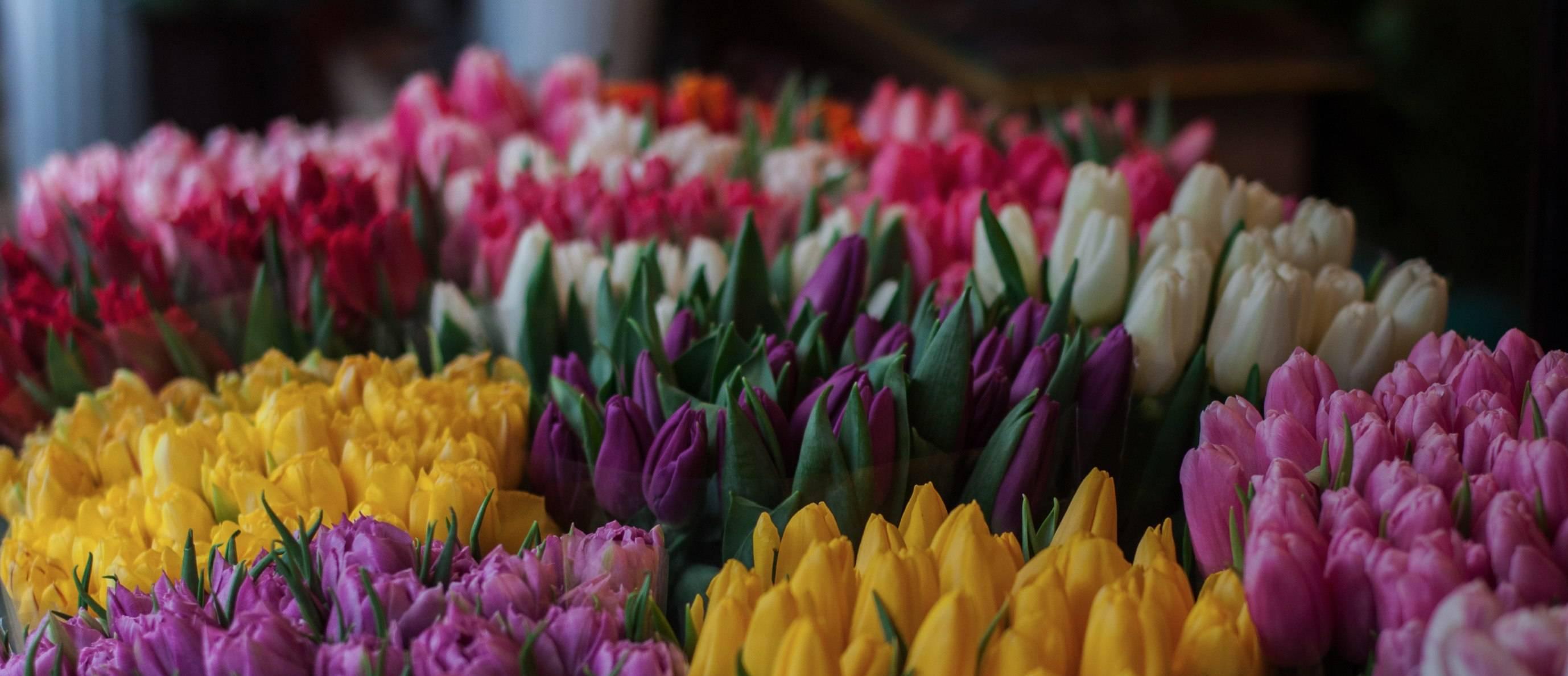 Verras jezelf of een ander met een bloemetje, juist nu!