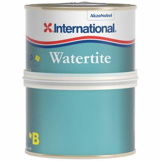 International International Watertite Epoxy Filler 250ml
