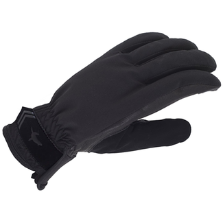 Sealskinz Sealskinz 2020 All Season Gloves